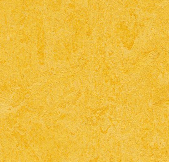 Marmoleum Forbo Click 333251 Lemon Zest