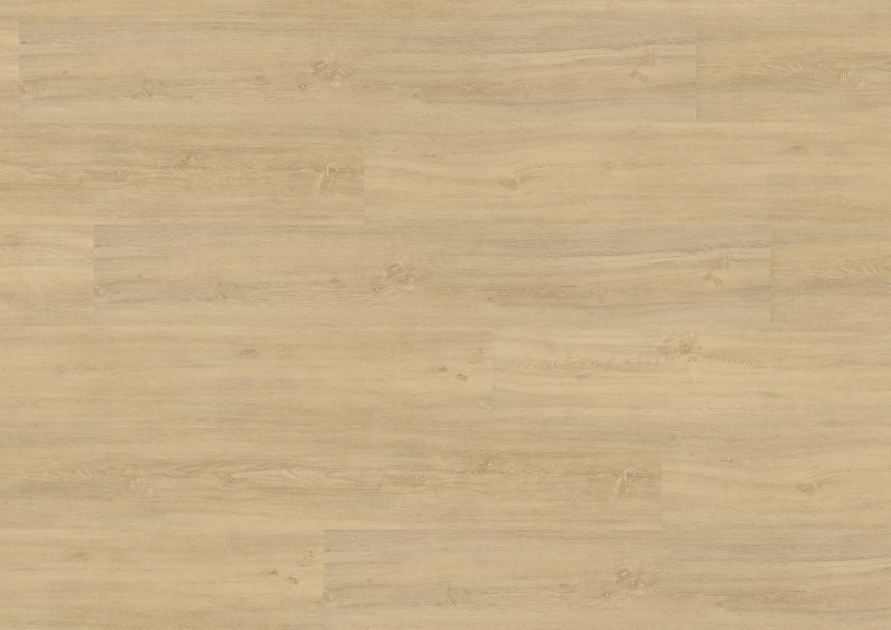 Vinylové podlahy Wineo 400 Wood XL, Kindness Oak Pure, DLC00125